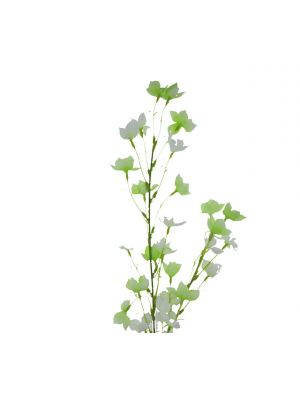 ARTIFICIAL ABUTILON PICTUM FLOWER 37 INCH IVORY AND GREEN