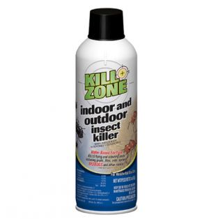 INSECT KILLER INDOOR AND OUTDOOR 3 OZ