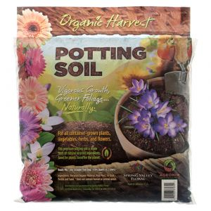 PLANT LAWN FOOD POTTING SOIL 4.2L