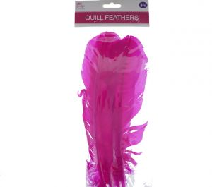 HOT PINK QUILL FEATHERS 10-12IN 4 COUNT XXX DIS