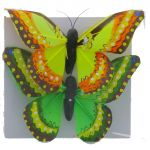 BUTTERFLY 2 PACK 4 INCH